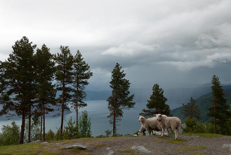 norvege-eaux6