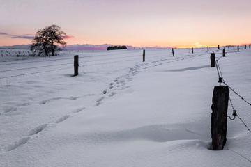 pano-neige-tumbanil