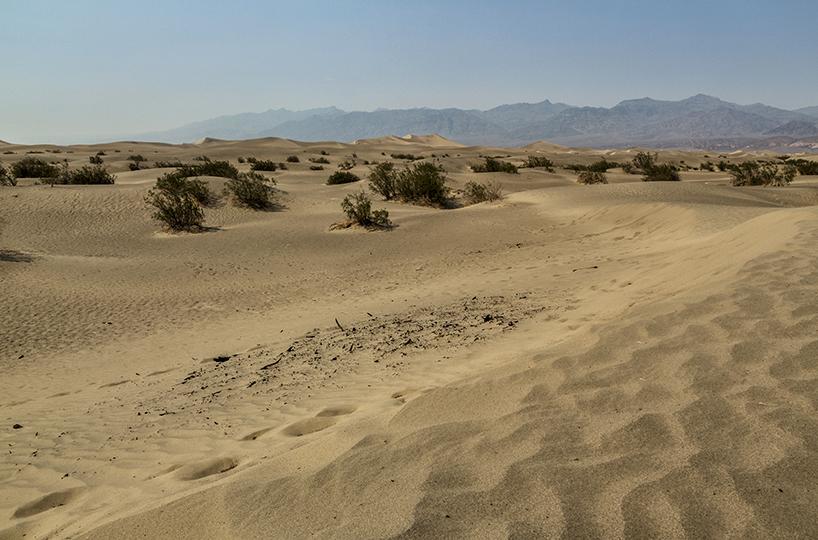 10-desert