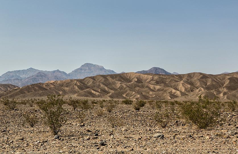 11-desert