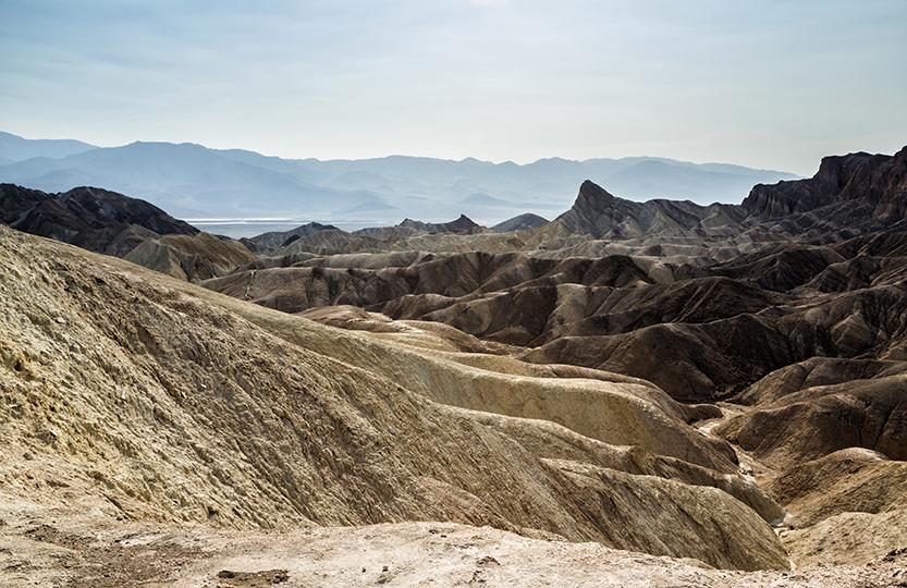 19-desert