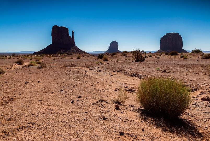 24-desert