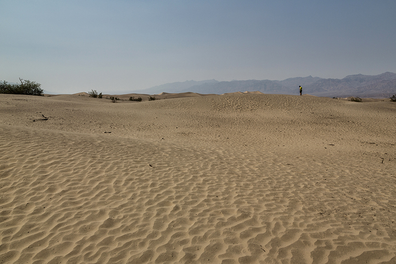 7-desert